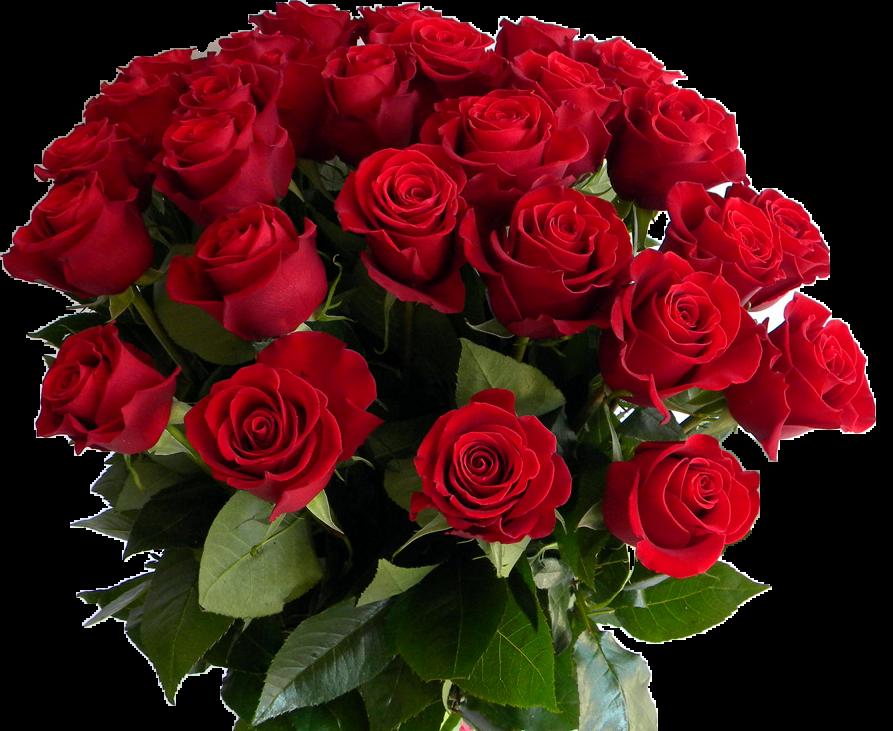 Новорожденной, открытки с днем рождения подруга красивые цветы